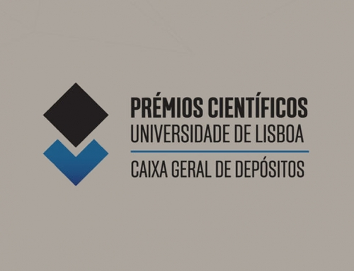 Prof. Margarida Amaral Receives Honorable Mention