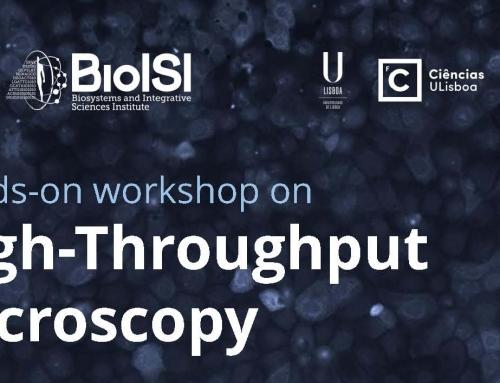 Hands-on Workshop on High-Throughput Microscopy, 9-13 July 2018, Lisbon
